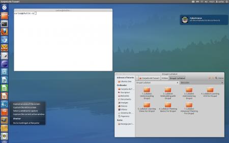 Как сделать Unity похожим на Xubuntu?